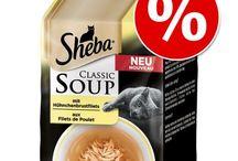 Comida para gatos / Encuentra la mejor alimentación para tu gato - pienso, comida húmeda, latas, sopas y mucho más...