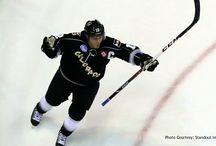 ECHL Articles