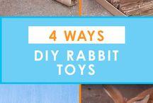 Rabbits stuff