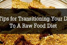 Dog - Researching Raw Diet. / by Diane Anthony