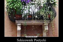 kwiaty balkonie