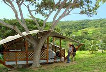 St.Croix Trip / by Jillian Krause