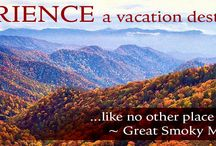 Cabin rentals in the Great Smoky Mountains! / Reserve your special place in the Great Smoky Mountains today!