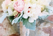 Blush Pink Wedding / Blush pink color inspiration for weddings and parties.  / by Elli