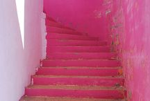 Pink / by Dora Ficher Art