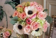 Centerpieces/Flowers / by Maren Turbow