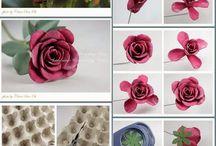 Flores Margarida