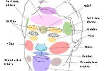 Zdravie - alternatívna diagnostika / tradičná čínska medicína, ajurvéda, meridiány, čítanie z tváre...