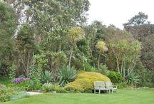 Het voorjaar in Cornwall / De voorjaarsreis bij uitstek! Rond mei bloeien enorme Rhododendrons en andere zuurminnende beplanting volop en zorgen voor een ware toeloop van tuinliefhebbers. Tuinen als Trebah, Lamorran en Traingwainton zijn dan onweerstaanbaar. Natuurlijk gaat u ook naar Heligan, de tuin die door Tim Smit aan de vergetelheid is ontrukt, maar ook zijn veelbesproken Eden Project wordt bezocht. Weliswaar is Tresco, met voorsprong de mooiste tuin van Cornwall.
