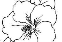 Embroidry design