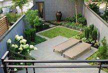 Courtyard gardening