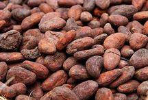 cocoa liquor / by Isadora Carrel