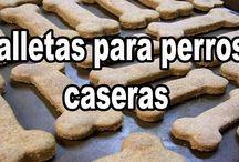 Comida y galletas para Chuchis