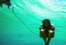 Underwater surfers