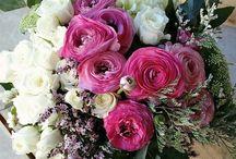 Rosas colores 1