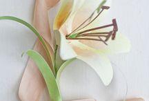 Paper Flowers / by Maggie Calamari