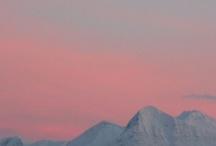Norwegian Blue / Pinning for the fjords.