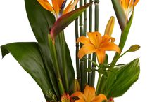 arrabjos de flores