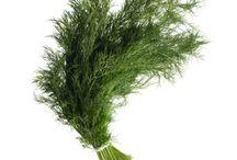 Заготовки Травы Зелень