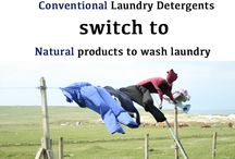 Green Cleaning / We are a cleaning company that understands cleaning chemicals and the dangers behind toxic and unsafe cleaners. We always recommend a natural way to clean up your mess first. There are many natural cleaners (lemon, baking soda, etc..) that everyone needs to know about and learn today.