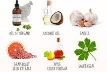 Alternative naturale la antibiotic