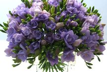 Wedding Bouquets & Boutonnieres / by Randi Selinsky