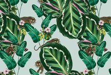 Natalia Swarz - Prints