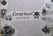 Bacily