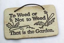 Garden quotes / Anything said about gardens