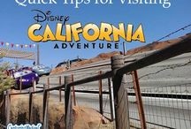 Disneyland and California Adventure Park