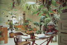 Interiour designs / #design #interiour #ideas #room #clean #windows #bohemian #boho