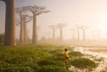 Discover Africa / Let's discover beautiful places in Africa!