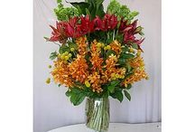 Dave's Custom Arrangements / Discover floral beauty created by our talented designers at Dave's Flowers in Los Angeles, California.