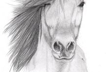 Paarden / Hier staan hele mooie paarden foto's/ tekeningen.