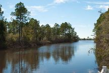 Milton Florida Living / See the  sights that make Milton, FL so desirable to so many people.