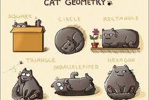 Cat / Miau!