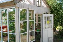 Greenhouse ideas / Ideas for a greenhouse