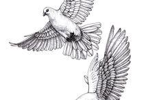 pigeon ink