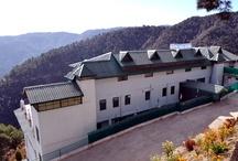 United-21 Resort in Chail
