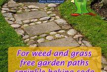 Garden weed bug control