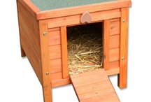 Cats / Everyone knows that some cats like to roam and this can put them at risk, particularly if you live near a busy road. Why not take a look at our wide range of cat kennels where your cat can enjoy the fresh air in complete safety.