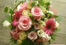 母の日 / 母の日の花ギフトのプレゼント。 お母さんの応援花!です。