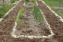 I can Dig It! / Gardening ideas and projects / by Lillyvette Montalvo