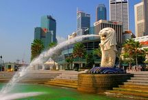 """Tour My Singapore / Find tourist information and create your travel guide for events and attractions in Singapore. The official website by the tour mySingapore.com"""""""