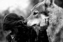 wolf and spirit