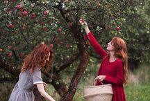 veg orchard