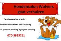 Wij gaan verhuizen / Hondensalon Wolvers gaat verhuizen naar een nieuwe locatie. M.i.v. 2 januari 2014 gaan wij naar de Prinses Mariannelaan 306 in Voorburg. Tot die tijd blijft de salon open op de huidige locatie.