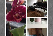 Home / Interior, ideas, a little mess.