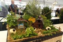 Fun Gardening Finds