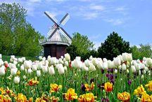 MEDICAL TOURISM IN NETHERLANDS (2015) / Medical tourism in Netherlands, cancer treatments , ivf, diagnosis,  addiction treatments , gene therapy treatments and more. http://www.intermedline.com/blog/our-services/medical-tourism-in-netherlands/